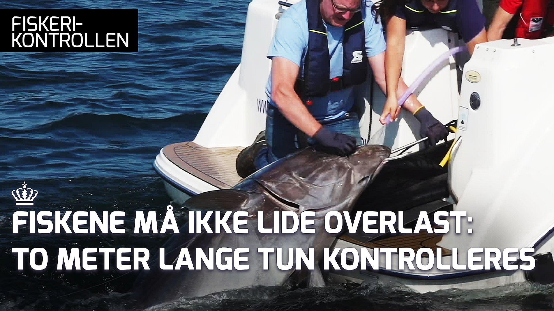 fiskerikontrollen afsnit 2