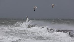 Nordjylland bliver blæst igennem: Vindstød af stormstyrke målt